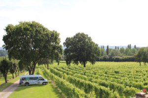 Tour bus and vineyard at Nutbourne
