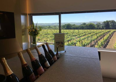 Great British Wine Tours - Vineyard and brewery tours in Sussex, UK - Wide image (24 of 60)