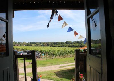 Great British Wine Tours - Vineyard and brewery tours in Sussex, UK - Wide image (44 of 60)