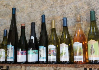 Great British Wine Tours - Vineyard and brewery tours in Sussex, UK - Wide image (47 of 60)