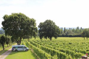 Great British Wine Tours bus at Nutbourne Vineyards