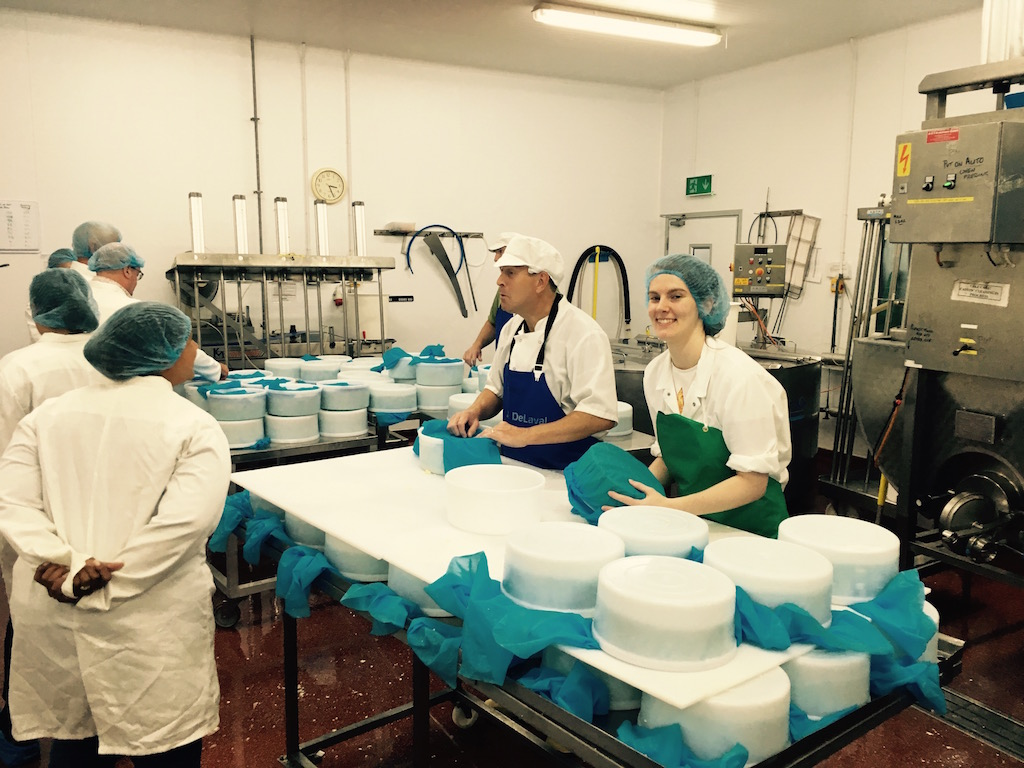 Tour Of High Weald Dairy