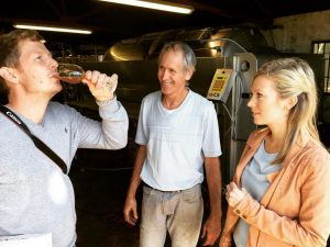 Private tour tutored wine tasting